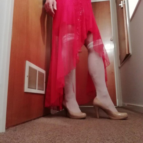 Picture of Kitply, CrossDresser 62 years old, from Plymouth Devon